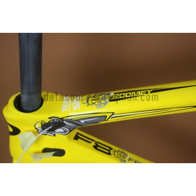 Pinarello Carbon Road Bike Bicycle Dogma F8 Team Sky-Dogma F8