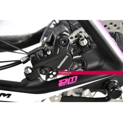 UCC MTB Carbon Bicycle The Terminator Version Pink Complete Bike-The Terminator Complete Bike